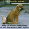 Are you angry? GOOD!